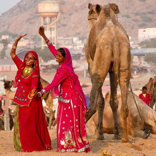 Jaipur with same day tour Ajmer Pushkar